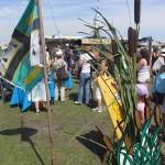 typhas et drapeau de Brière